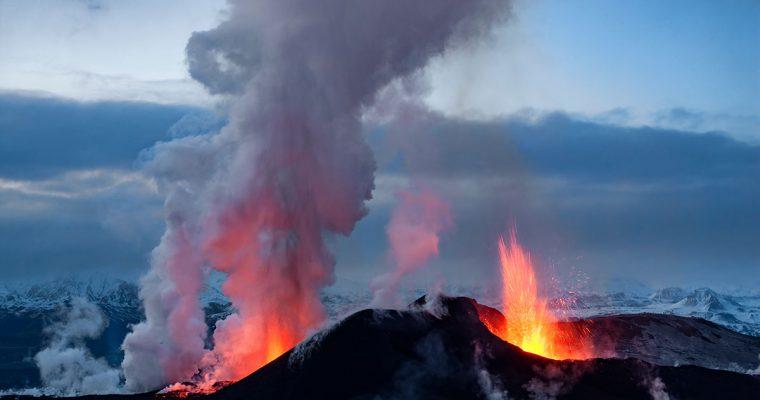 Unberührtes Lamm von der Insel aus Feuer und Eis